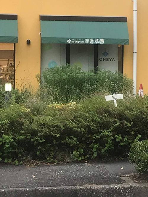 薬香草園のショップ